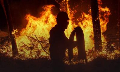How Tondela's Portuguese club caught fire