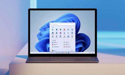 Windows 11 Microsoft Insiders build versão