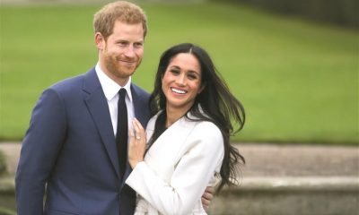 The study found that the popularity of Prince Harry and Meghan Markle in the UK plummeted