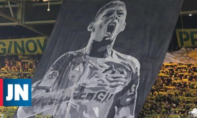 Greed for Safety at the Origin of Emiliano Sala's Fatal Flight